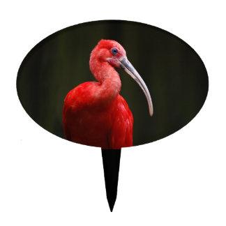 Escarlata Ibis Figuras De Tarta