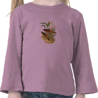 Escarlata Minivet (flammeus de Pericrocotus) Camisetas