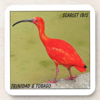 Escarlata rojo Ibis de Trinidad and Tobago Posavaso
