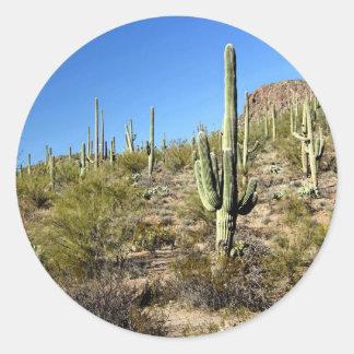 Escena 03 del desierto de Sonoran Pegatina Redonda