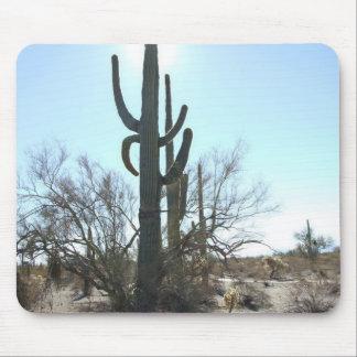 Escena 05 del desierto de Sonoran Tapete De Ratón