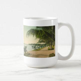 Escena 1898 de la Florida del vintage del Palm Bea Tazas De Café