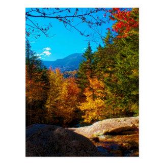 Escena blanca 2013 del otoño de las montañas de postales