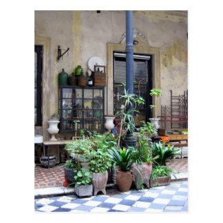 Escena de Buenos Aires con las plantas verdes en Tarjetas Postales