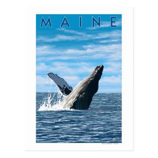 Escena de la ballena de MaineHumpback Postal
