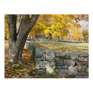 Escena de la caída con el árbol y la pared de tarjeta postal