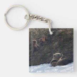 Escena de la familia del grisáceo llavero cuadrado acrílico a una cara