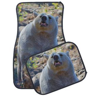Escena de la fauna del oso el oler Kermode Alfombrilla De Auto