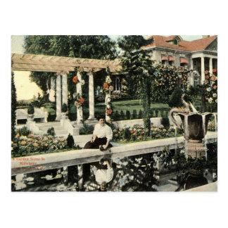 Escena de la flor del jardín, vintage 1914 de Los Postales