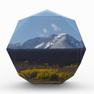 Escena de la montaña de Colorado