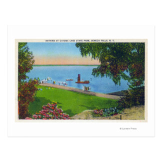 Escena de la natación en el parque de estado del tarjeta postal