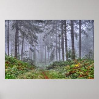 Escena de la naturaleza de los árboles del arbolad póster