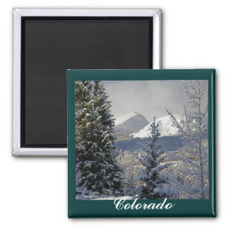 Escena de la nieve del invierno, Colorado Imán Cuadrado