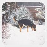 Escena de la nieve del invierno con el perro negro calcomanía cuadrada personalizada