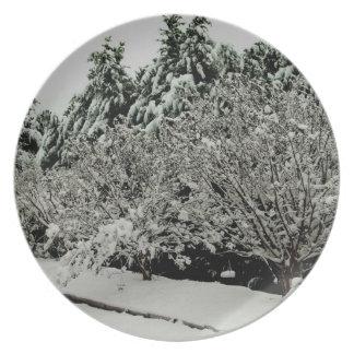 Escena de la nieve del invierno en la placa de la  platos