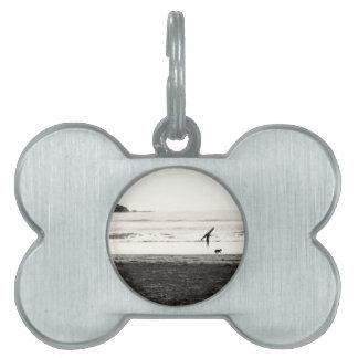 Escena de la playa de California septentrional Placas De Nombre De Mascota