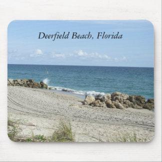 Escena de la playa de la Florida FL de la playa de Tapetes De Ratones