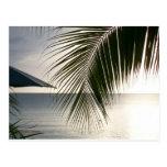 Escena de la playa de Negril Tarjeta Postal