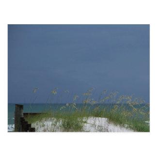 Escena de la playa del golfo postales
