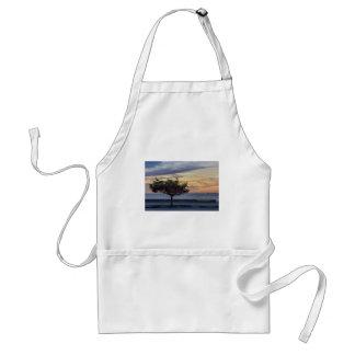 Escena de la puesta del sol en el paseo marítimo delantal