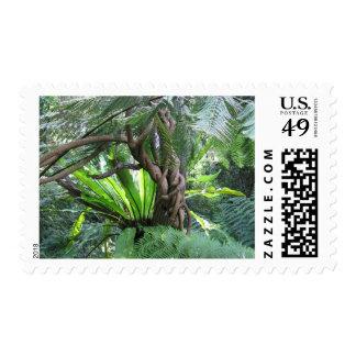 Escena de la selva tropical sello