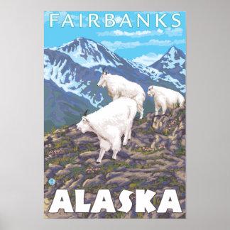 Escena de las cabras de montaña - Fairbanks, Alask Posters