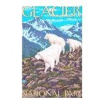 Escena de las cabras de montaña - Parque Nacional  Impresión En Lona Estirada
