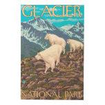 Escena de las cabras de montaña - Parque Nacional Cuadros De Madera