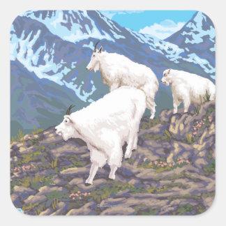 Escena de las cabras de montaña - Sitka Alaska Calcomanias Cuadradas