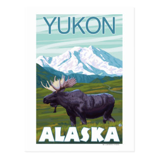Escena de los alces - el Yukón, Alaska Postal