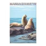 Escena de los leones de MassachusettsSea Impresión En Lona