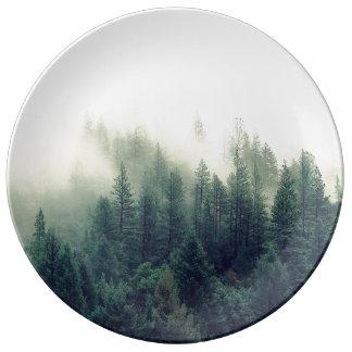 Escena de niebla de relajación del bosque que platos de cerámica