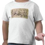 Escena de una danza sagrada camisetas
