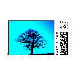 Escena del árbol del invierno envio