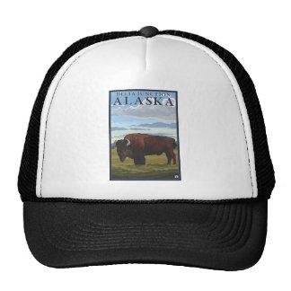 Escena del bisonte - empalme del delta, Alaska Gorras De Camionero