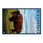 Escena del bisonte - Wyoming Tarjeta Postal
