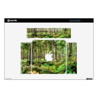 Escena del bosque de Hampshire Inglaterra del brez Skins Para elMac Mini