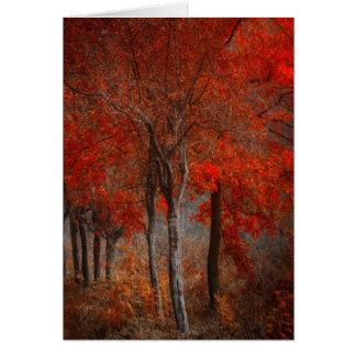Escena del bosque del vintage tarjeta de felicitación