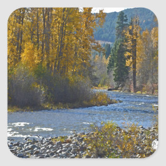Escena del bosque y del río del otoño pegatina cuadrada