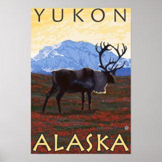 Escena del caribú - el Yukón, Alaska Posters