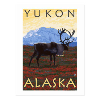 Escena del caribú - el Yukón, Alaska Postal
