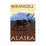 Escena del caribú - Wrangell, Alaska Postales