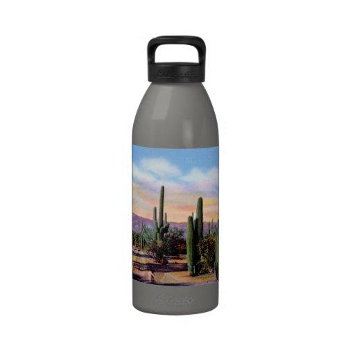 Escena del desierto de Arizona Sonoran Botella De Agua