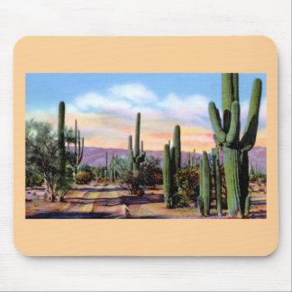 Escena del desierto de Arizona Sonoran Alfombrillas De Raton