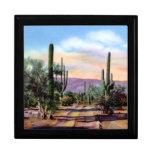 Escena del desierto de Arizona Sonoran Caja De Regalo