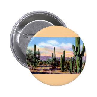 Escena del desierto de Arizona Sonoran Pins