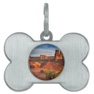 Escena del desierto placa de mascota