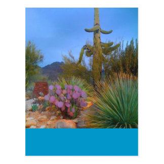 Escena del desierto postales