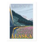 Escena del ferrocarril de Alaska - caza, Alaska Tarjetas Postales