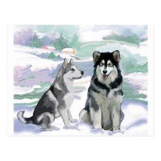 Escena del invierno del Malamute de Alaska Tarjeta Postal